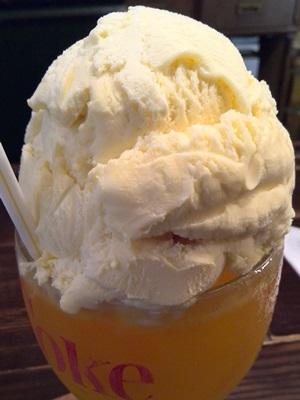 バードモナミ オレンジフロート